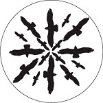 Circling Birds Silhouette 2